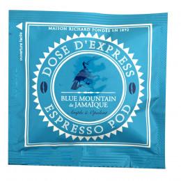 Café Blue Mountain pods ESE étui x25